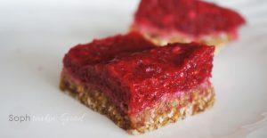 Paleo Raspberry Squares