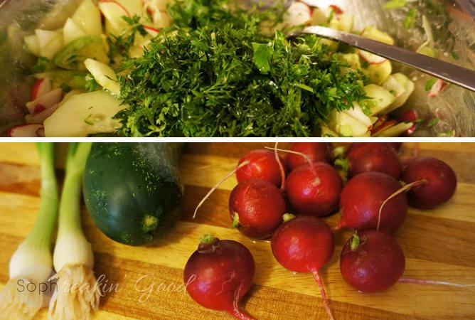 Refreshing Cucumber & Radish Salad